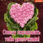 Спешу порадовать тебя цветочками