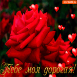 Тебе, моя дорогая волшебные розы