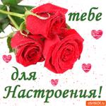 Тебе розы для настроения