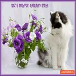Открытка котик с цветами