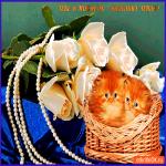 Открытка рыжие котики с розами