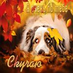 Трогательная открытка скучаю с осенью
