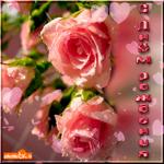 Цветы для именинницы