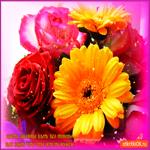 Цветы тебе без повода