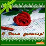 Цветок любимому учителю