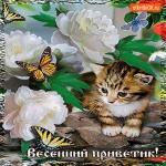 Цветущий весенний приветик