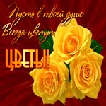 Цветы сегодня для тебя
