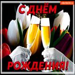Твой день рождения подруга, поздравляю