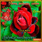 Удачи радости и любви