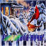Удивительная зимняя открытка спокойной ночи