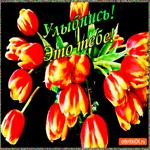 Улыбнись эти цветы тебе