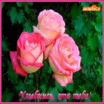 Улыбнись это тебе букет роз