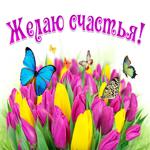 Улыбнись, Эта корзина цветов для тебя