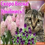 Улыбнись, Скоро Весна