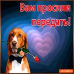 Открытка с цветами с собакой