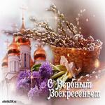 Вербное воскресенье церковь