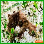 Весенний ароматный приветик