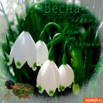 Весна время новых надежд