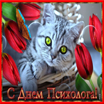 Видео открытка День психолога в России