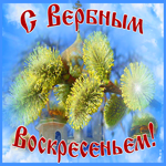Видео открытка Вербное воскресенье