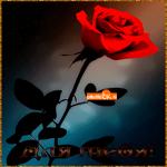 Волшебная роза для тебя