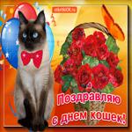 Вот тебе корзина с розами в день кошек