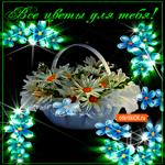 Все цветы эти для тебя
