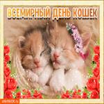 Всемирный день кошек 8 августа