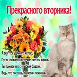 Я хочу тебе пожелать удачного и прекрасного вторника