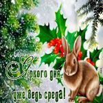 Яркая открытка со средой и зимой