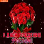 Ярослава с праздником Тебя