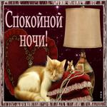 Замечательная картинка спокойной ночи с кошкой