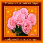 Желаю счастья, радости и добра тебе