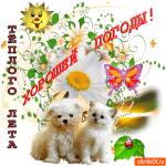 Желаю тёплого лета и хорошей погоды
