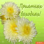 Желаю вам приятных выходных