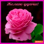 Желаю великой удачи