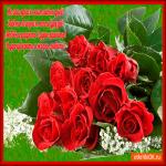 Желаю ярких счастливых дней тебе