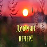 Живая открытка добрый вечер