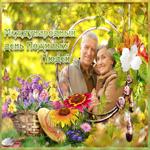 Живая открытка Международный день пожилых людей