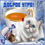 Зимняя картинка доброе утро с котиком