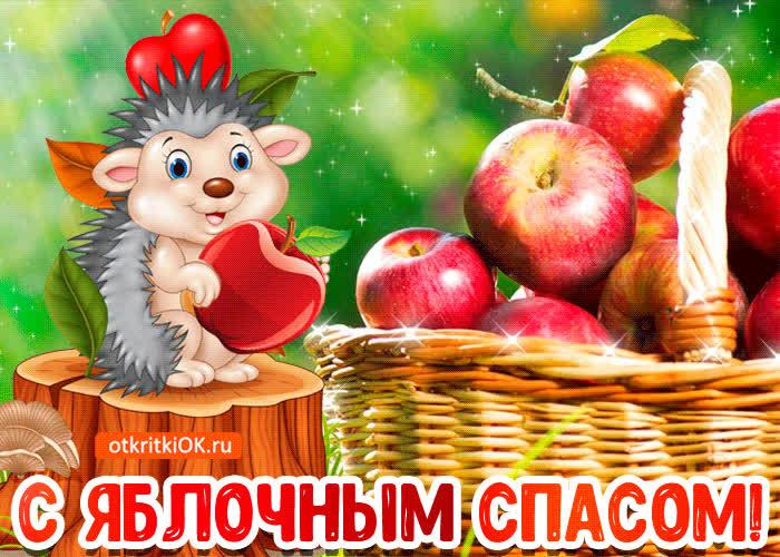 Открытки с яблочным спасом прикольные, фото открытки прикольные
