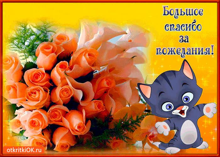 Большое огромного спасибо за открытку, картинки осень