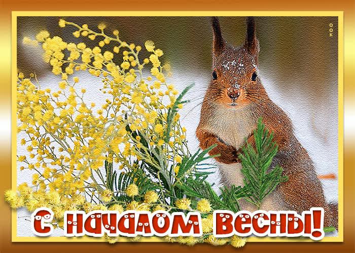 Открытка чудесная открытка с весной