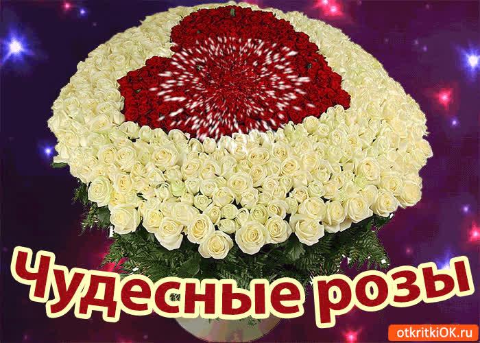 Картинка чудесные розы для тебя!
