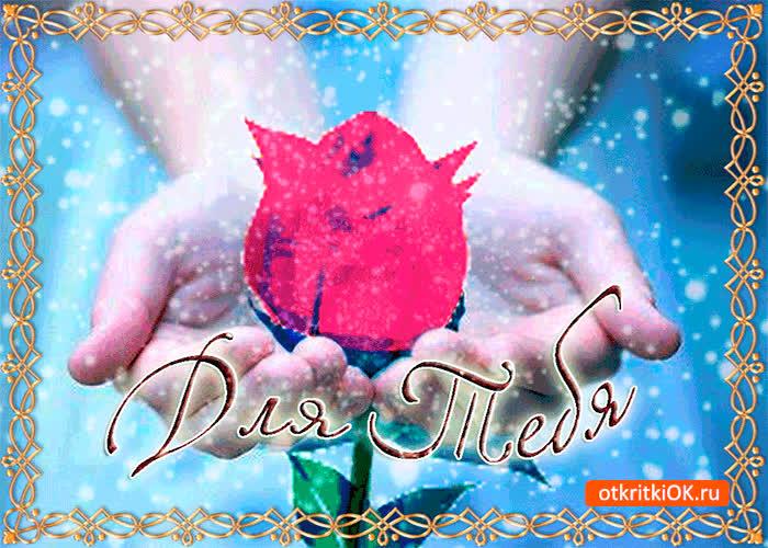 Картинка для тебя роза от меня