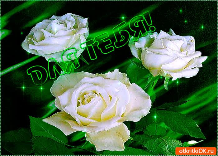 Картинка для тебя розы эти от меня