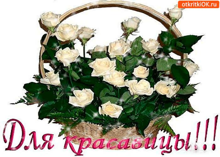 Картинка для красавицы корзина белых роз