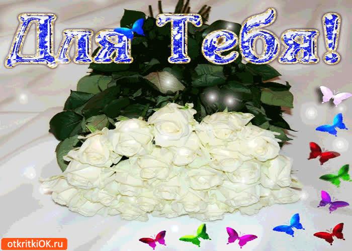 Днем рождения, картинка белая роза с надписью