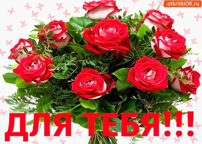 Открытка букет роз для тебя дорогая