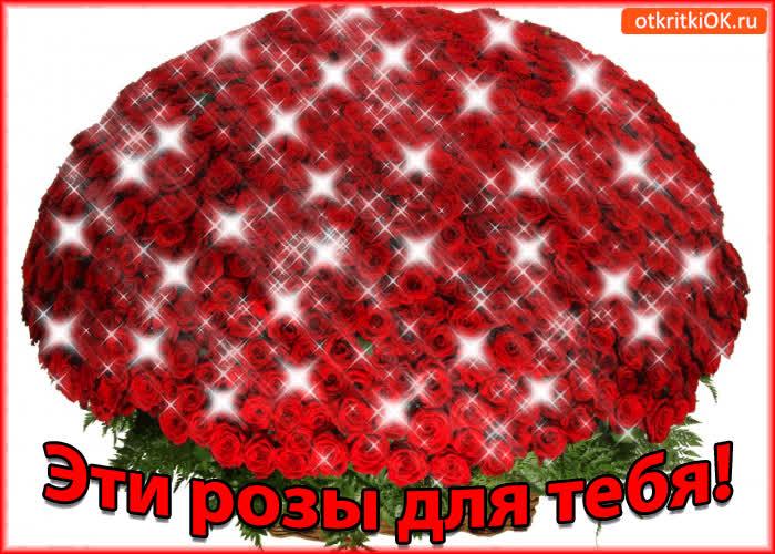 Картинка эти розы для тебя!